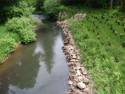 Live Fascine Stream Restoration